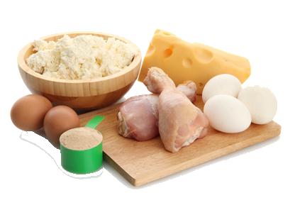 R gime prot in favoriser la masse maigre for Regime proteine