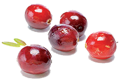 cure detox : cranberries